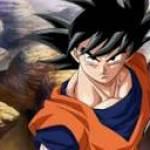 Son Goku Profile Picture